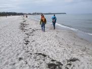 Die Schüler stapfen über den Strand