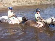 Klassenfajrt auf den Ponyhof