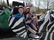 In der Zebragondel